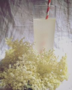 Prosecco al Fiore di Sambuco
